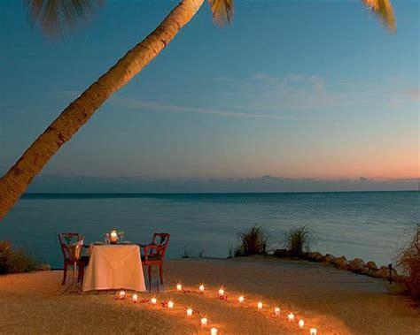 palm island resort miami yacht boat travel charter rentals