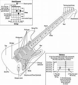 Acoustic Electric Guitar Parts Diagram