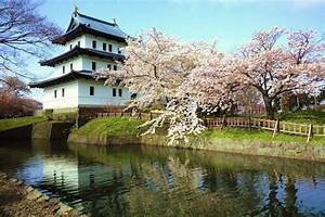 Matsumae  Let U0026 39 S Go To Matsumae Castle Wrapped In Cherry