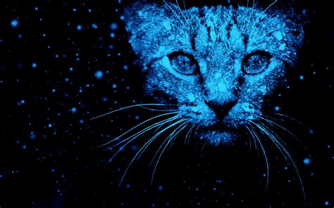 3d Wallpapers Hd Images by Wallpaper Cat Snow Neon Blue Hd Creative Graphics 11130