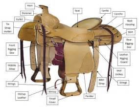 The American Cowboy Chronicles  Western Saddle Diagrams