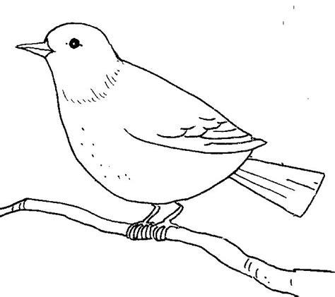 birds clipart outline   cliparts  images