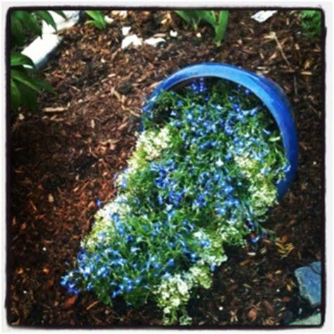 images  spilling outta  pot  pinterest gardens flower    garden