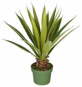 Artificial Small Spike Yucca Plant Traditional