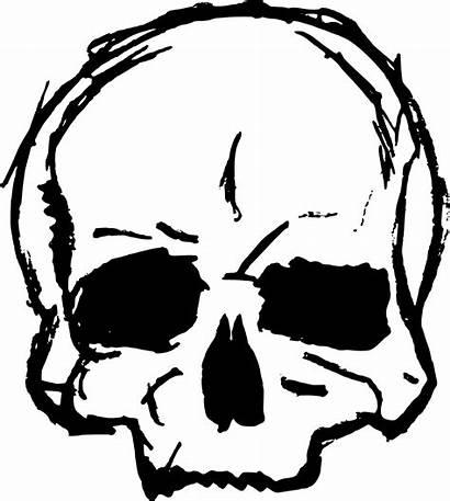 Skull Transparent Drawing Svg Vector Clipart Clip