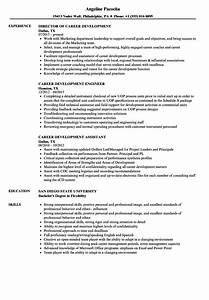 Career Development Resume Samples