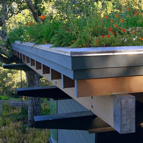 design ideas for flat roofed buildings