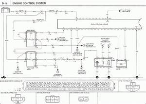 2000 Kia Sportage Fuse Box Diagram