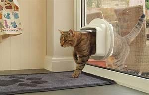 Cat flap installation in glass door top cat flaps for Cat bathroom door