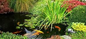 bassin de jardin ooreka With idee pour amenager son jardin 4 construire bassin exterieur etang ou jardin deau plans