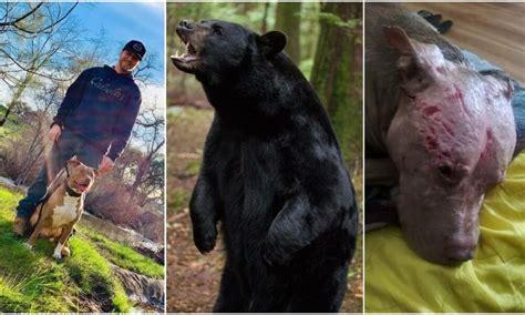 brave man risks  life  fights  pound black bear