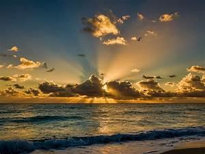 miami florida beautiful morning sea