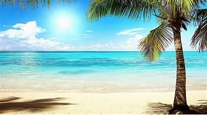 Florida Desktop Estate Beaches Miami Palm Backgrounds