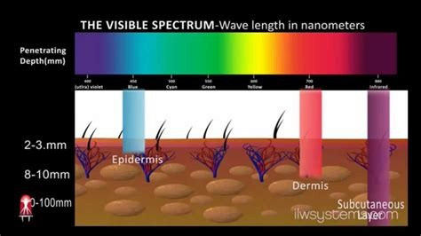 in light wellness systems in light wellness systems led light therapy animation