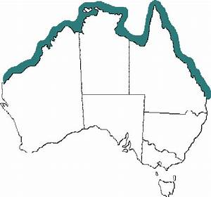 Australian Distribution Of The Irukandji Jellyfish