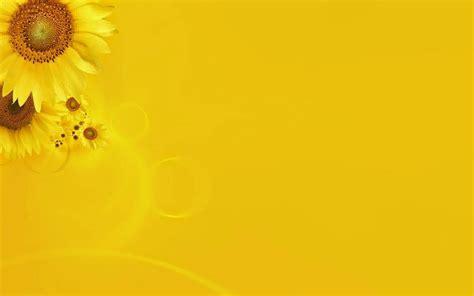 keren  wallpaper lucu warna kuning richa wallpaper