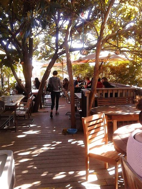 On the street of market street and street number is 333. Krakatoa is a Cozy Treehouse Coffee Shop In Southern California