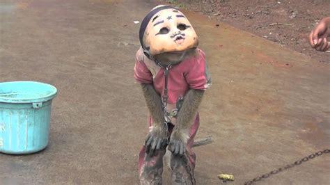 street monkey  mask  indonesia youtube