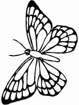 Butterfly Coloring Pages Monarch sketch template