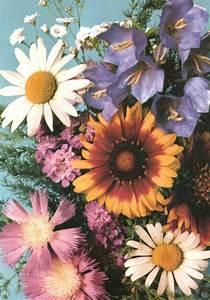 flower gif on Tumblr