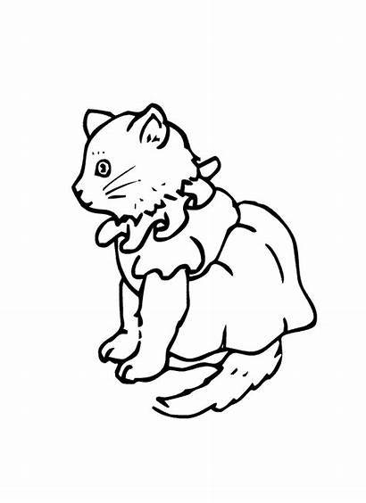 Coloring Pages Kitten Getcoloringpages Pm Posted 1080p