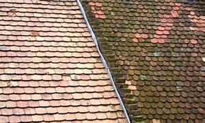 Nettoyage Toiture Karcher : d moussage toiture lichens champignon prix devis ~ Dallasstarsshop.com Idées de Décoration