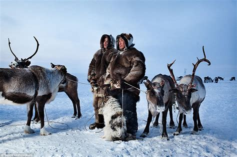 climate change and inuit tribes the scientific student