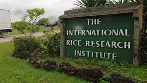 MoA signed to set up IRRI Centre at Varanasi   Agri Nation ...