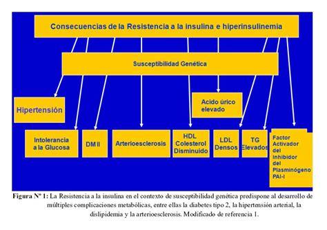 type  diabetes mellitus  insulin resistence