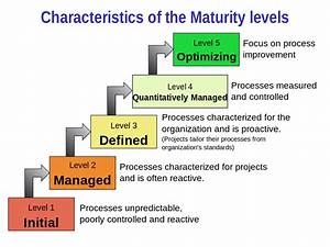File Characteristics Of Capability Maturity Model Svg