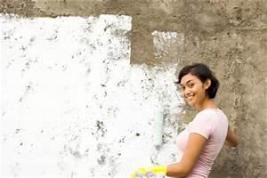 Streichen Auf Putz : fassade streichen anleitung bei einer putzfassade ~ Lizthompson.info Haus und Dekorationen