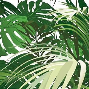 Papier Peint Photo : papier peint personnalis photo jungle panoramique poster ~ Melissatoandfro.com Idées de Décoration