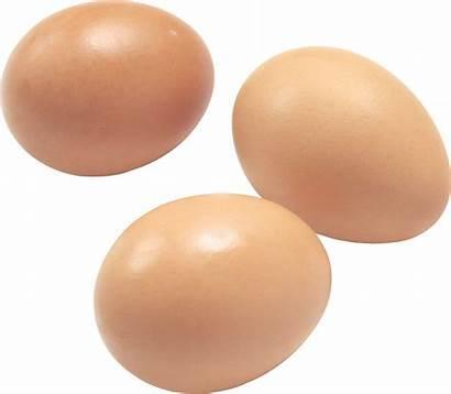 Egg Transparent Eggs Background Clipart Clear Clip