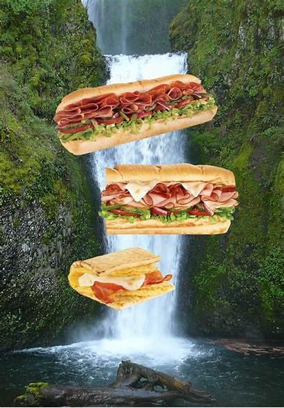Sandwiches Heaven Because Come Source