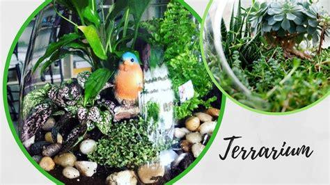comment faire un terrarium comment faire un terrarium