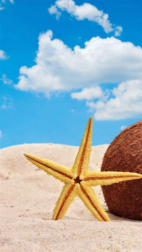 Animated Summer Wallpapers - summer hd wallpaper 81 images