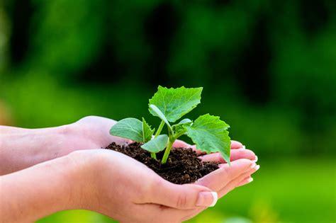 Garten Und Landschaftsbau Zubehör by Garten Und Landschaftsbau Gehalt Studium Ausbildung Und