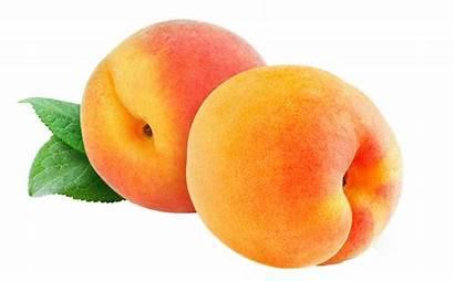 Purepng Peach Transparent