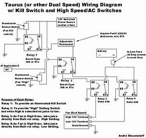 Taurus Fan