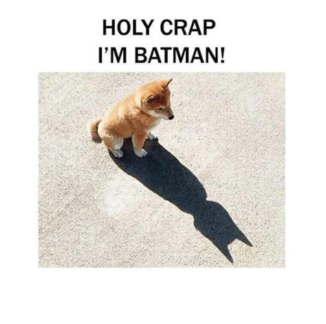 Holy Crap Meme - 25 best memes about im batman im batman memes