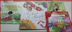 Best Montessori Botany Activities For Kids