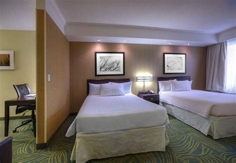 springhill suites tampa brandon updated  prices