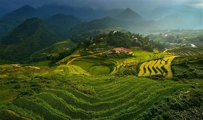 Vietnam Landscape Field Backgrounds Wallpapers Desktop Terraced