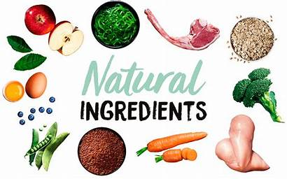 Ingredients Natural Ingredientes Keto Supplements Shred Diet