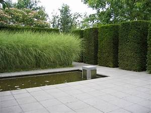 Kleinwüchsige Immergrüne Hecke : immergr ne pflanzen hecke hohe ziergr ser terrasse ~ Lizthompson.info Haus und Dekorationen