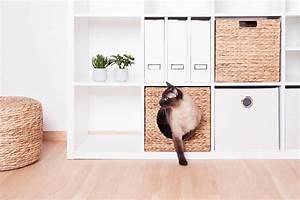 Kallax Regal Von Ikea : der beste ikea bett hack den du je gesehen hast new swedish design ~ Markanthonyermac.com Haus und Dekorationen