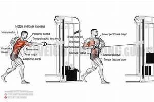 Standing Twisting Cable Row Exercise Instructions And Video