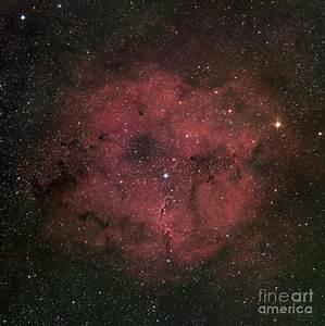 The Large Ic 1396 Emission Nebula Photograph by Robert Gendler