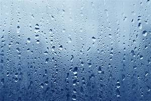 Winter Window Tips - Condensation Advice