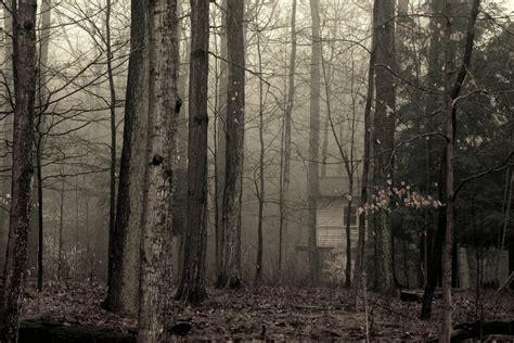 fog house 28 images house of sand and fog fog house the modern house house of the
